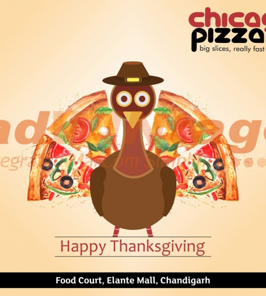Chicago Pizza,Chandigarh – Thanksgiving greetings