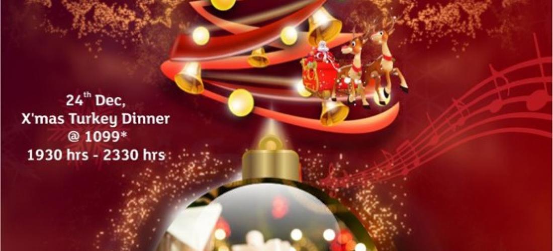 Park Plaza Faridabad – Christmas Celebration Promotion