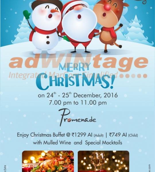 Park Plaza Shahdara – Christmas Promotion